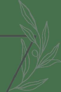 Seven Branches Logo